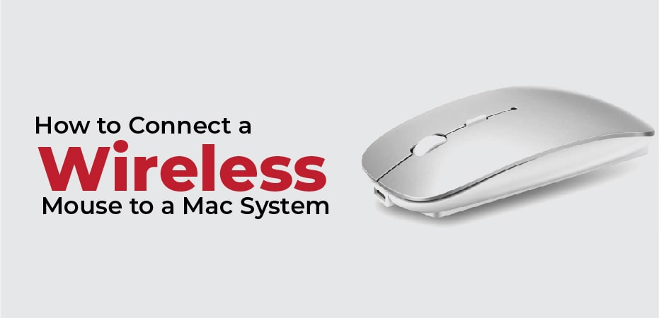 How To Connect A Microsoft Wireless Mouse